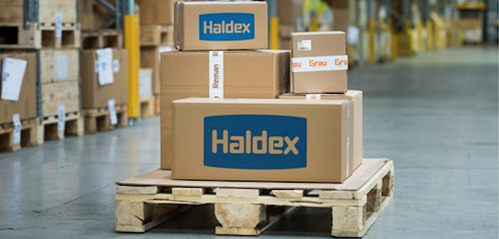 How did Haldex start life?